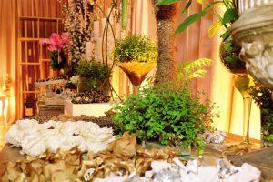 Cerimonial-porto-bello_aniversario_tania-santos (1)